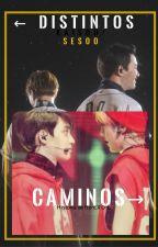 ← Distintos Caminos→  [Kaisoo/Sesoo] by Ro-EXO-L