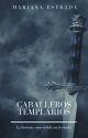 Caballeros Templarios by nanysestrada