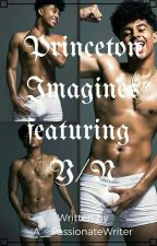 Princeton Imagines FEATURING Y/N *completed* by A__PassionateWriter