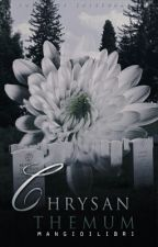Chrysanthemum; zm by mangioilibri