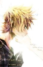 A summer's love... (Roxas x Reader) by X-Ms_Nobody-X