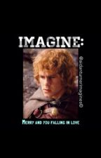 IMAGINE: Merry and you falling in love by Aidanturnerimagines