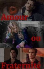 Amour ou fraternité | TVD by Ellie-xox-