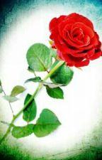 I believe by Hwan_Tianyi