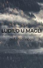 Ludilo u magli by PileOfBones