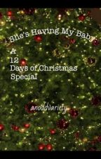 She's Having My Baby: A 12 Days of Christmas Special by anoddvariety