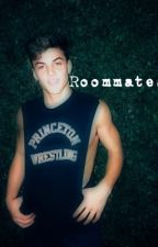 Roommate by _dolantwins_