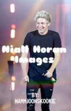 Niall Horan Imagines by NammjoonsKookie