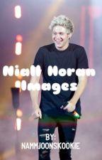 Niall Horan Imagines by NammjoonsKookie