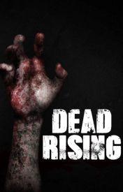Dead Rising // TWD Daryl Dixon Fanfiction. by JustHorrorandBooks