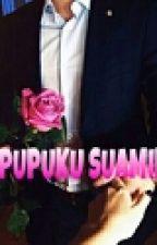 Sepupuku Suamiku by nurainaa_