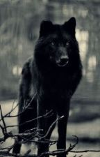 Wolf Book by _RebelWolf_