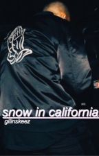 snow in california // j.g by ricegum