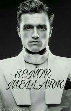 Señor Mellark by Leslie_sicairos