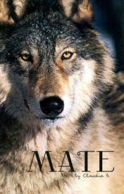 Mate by cityofswift