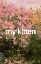 my kitten by babyhershel