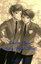 Devils or Angles? (Hikaru x Reader x Kaoru) by adamalexander288