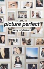 picture perfect // larrystylinson by hightidelou