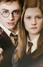 Harry i Ginny po Hogwarcie by mateuszpotter