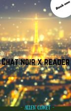Chat noir X Reader by what-sweater