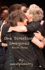 One Direction Imagines Book Three by sweetpieharry