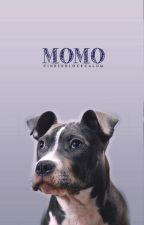 Momo ➳ calum hood by cinderblockcalum
