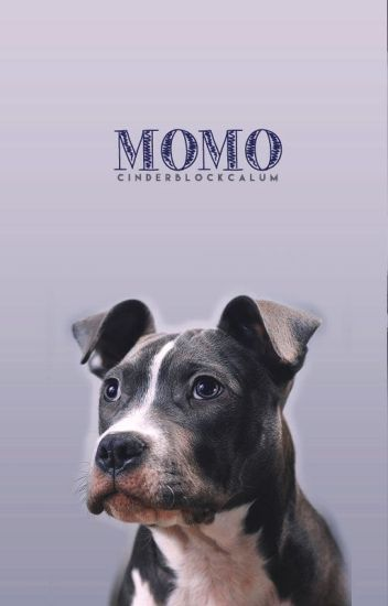Momo ➳ calum hood