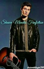 Shawn Mendes Fanfiction by theinvisiblegirl38
