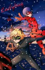 Miraculous LadyBug & ChatNoir by Karin340
