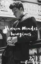 Shawn Mendes Imagines by bringingbackshawn