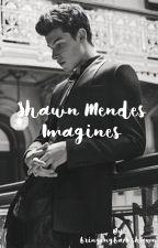 Shawn Mendes Imagines by bringingbackshawn