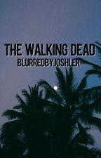 The Walking Dead Imagines by BlurredbyJoshler
