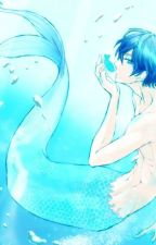 A Mermaid in Shark's Domain (Haru x Rin) by Edajjan