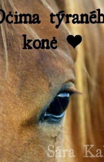 Očima týraného koně