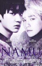 Namu | CB. by Lannyssi