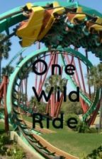 One Wild Ride by Someone2Sing