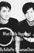 What Really Happened at Vidcon by KelliePie