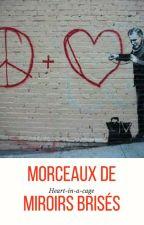 Morceaux de miroirs brisés by Heart-in-a-cage