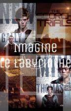 Imagine le labyrinthe [PAUSE] by I_Am_Just_Unique