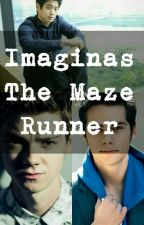 Imaginas The Maze Runner  by fuckingWorld