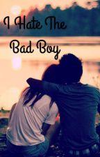 I Hate The Bad Boy by AddysonM