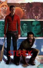Sterek -Drabble/Shot- by AnotherSigh