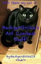 Art Contests by Badgerstrike13