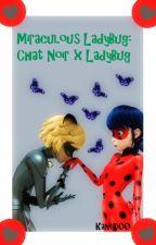Miraculous LadyBug: Chat Noir x LadyBug by Kaneki00