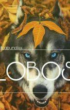 Lobos  by xMicapundixx
