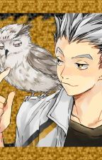 Teach Me How To Fly (A Koutaro Bokuto Story) by WizzyGameMaster