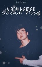 Bullied By Calum Hood by Abby_Music6