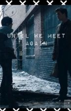 Until We Meet Again by WRITE_ALL_THE_FANFIC