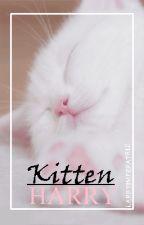 Kitten Harry ➳ au! l.s by larryimperatriz