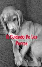 El Cuidado De Los Perros by matiazxz